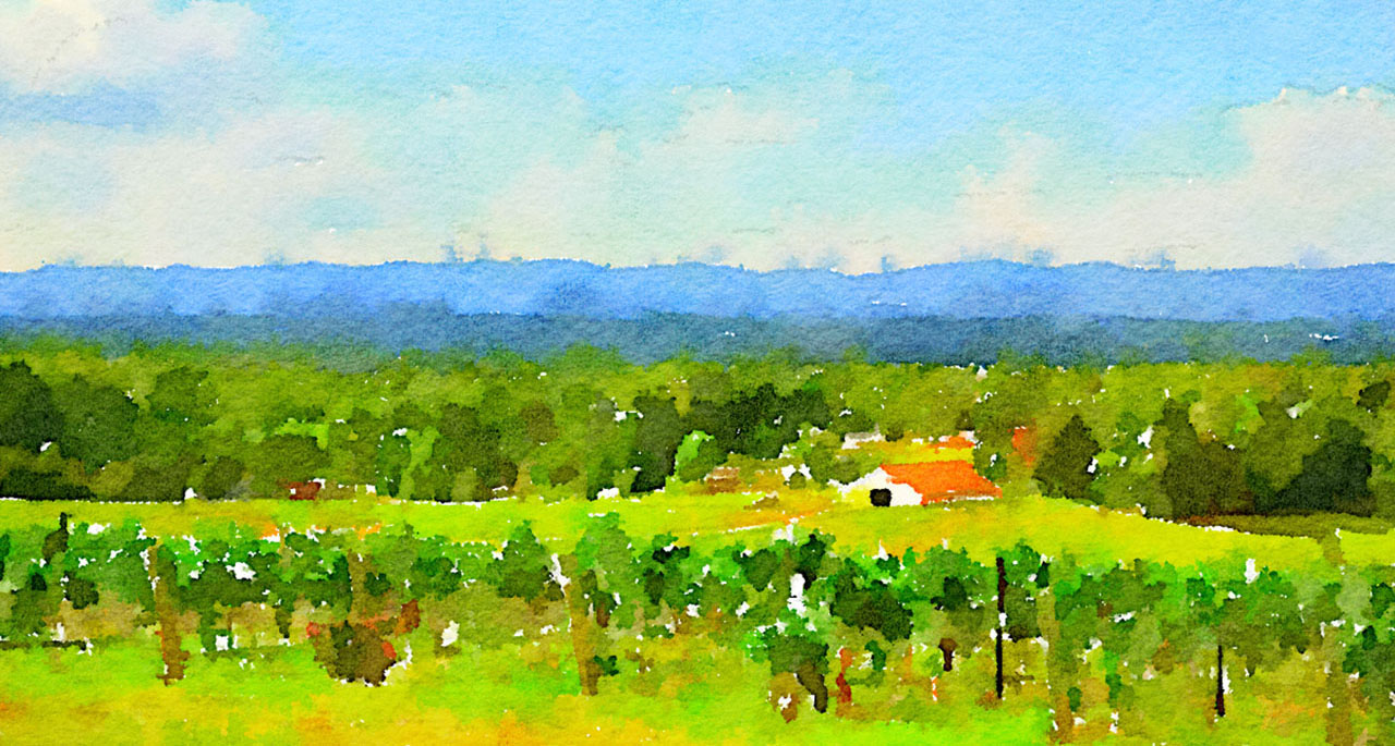 watercolor-vineyard-1280_685